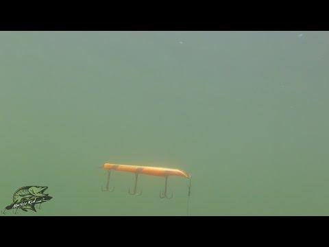 Muskie Fishing For Beginners - Part 3 Of ?? - Jerkbaits