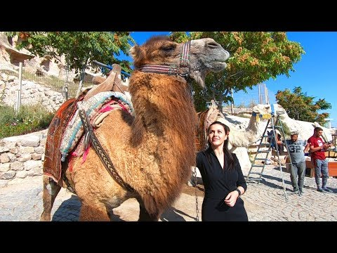 ONE DAY IN CAPPADOCIA   A Strange & Beautiful Land
