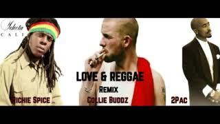Collie Buddz - Love & Reggae (Ft Richie Spice & 2Pac) - Selecta Cali Remix 2018