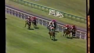 McGinty-1983 Caulfield Stakes