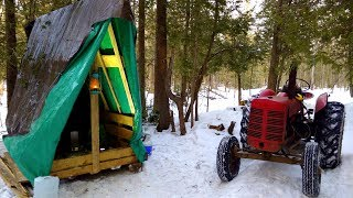 Sleigh Shelter & Corduroy Road Preparations- Log Cabin Update- Ep 10.4