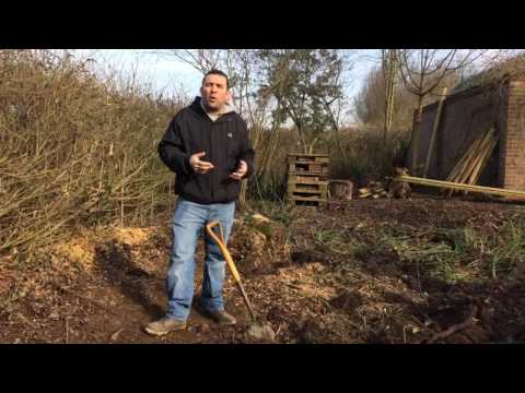 Quick tips on building a garden pond