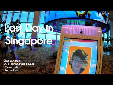Singapore Changi Airport - SATS Premium Plaza Lounge - Qantas Club - Chicken Rice - Meal time chat
