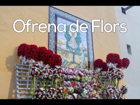 Ofrena de Flors