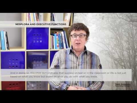 Sam Goldstein and Executive Functions - Nesplora Technology & Behavior