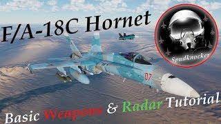 Fox One! | Basic Weapons and Radar Tutorial for the DCS: F/A-18C Hornet!
