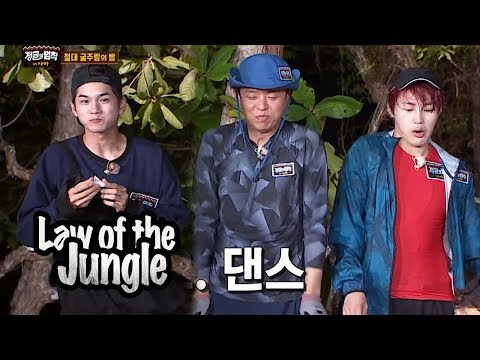 Show Us Wanna One's Squid Dance Later On~! [Law Of The Jungle Ep 329]