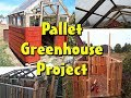 Greenhouse Built with free pallets.