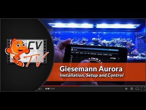 giesemann aurora installation setup control youtube