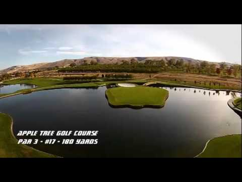 Apple Tree Golf Course - Hole #17 - Par 3 - 180 Yards