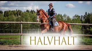 S01|A07 - Halvhalt | Blueheart digital clinic