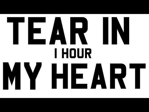 Twenty One Pilots - Tear In My Heart   1 HOUR