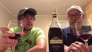 The Beer Review Guy #1119 Mogen David Concord Wine 11.0% abv