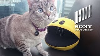 Nala the Cat Gets Pixelated!