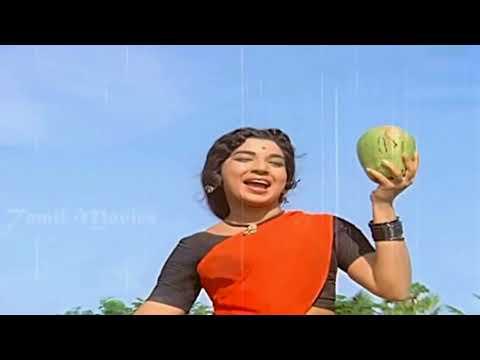 Naan Ezhu Vayasula Video Song HD   Annai Velankanni