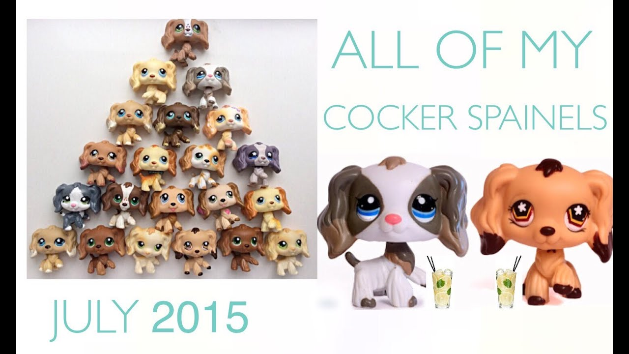lps all my cocker spaniels youtube