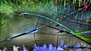 Рыбалка На Поплавок С Ночёвкой. Гнёт так что аж страшно, херабуна