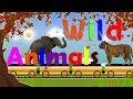 Learn Zoo Wild Safari Animals | Lion, Tiger, Elephant, Kangaroo, Camel for kids | The Animals Train