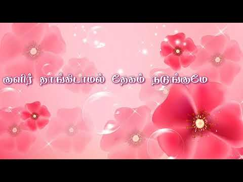 Whatsapp status Tamil video | lovely song | yaar intha devathai | surya whatsapp status