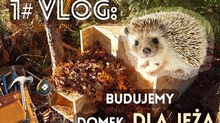 Budujemy domek dla jeża: VLOG 1#