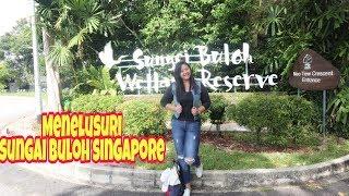 Sungai Buloh Wetland Reserve Singapore