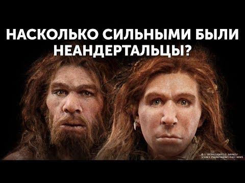 Кто победит: человек или неандерталец?