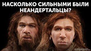 Кто победит человек или неандерталец