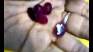 Natural Rubies / Ruby Loose Gemstones