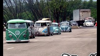 NORTH VOLKS ANUAL LOW BUGS 2014