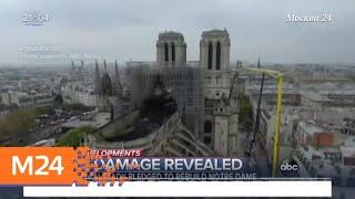 Смотреть видео Мошенники вымогали пожертвования на собор Парижской Богоматери - Москва 24 онлайн