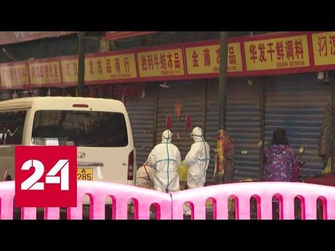Вспышку пневмонии в Китае вызвал новый вид коронавируса - Россия 24