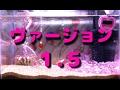 【ニッソー】 アクアジュエルン バージョン1.5 アクアリウム 水槽 【NISSO】