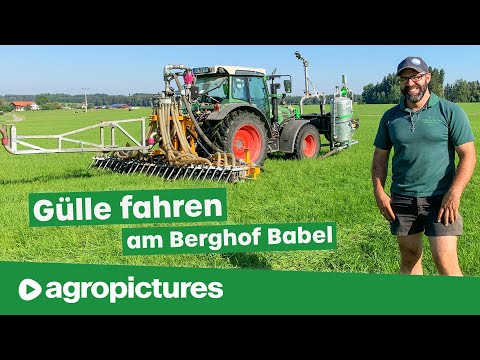 Gülle fahren am Berghof Babel | Eigenbau Gülleverschlauchung mit Fronttank