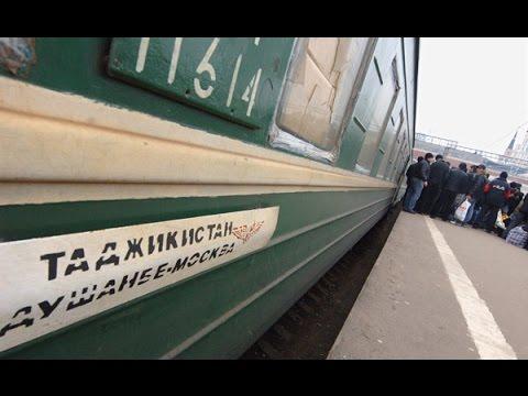 Таджикистан готовится к возвращению миллиона мигрантов. Где будут работать таджики?
