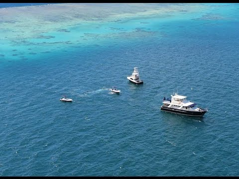 Adventure On Great Barrier Reef With Far North Sports Fishing