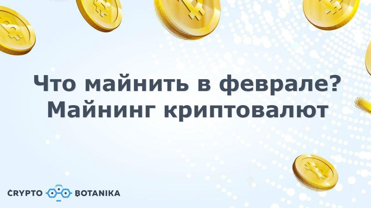 Какие монеты майнить в феврале? - Майнинг криптовалют