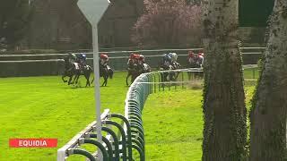 Vidéo de la course PMU PRIX DE L'YONNE
