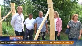 VTV Dnevnik 10. kolovoza 2017.