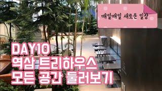 DAY10 커먼라이프 역삼 트리하우스 모든 공간 대공개…