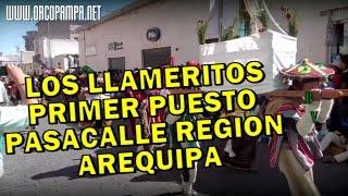 DANZA LOS LLAMERITOS DE PANAHUA GANARON EL PRIMER PUESTO EN EL PASACALLE REGIONAL AREQUIPA 2015
