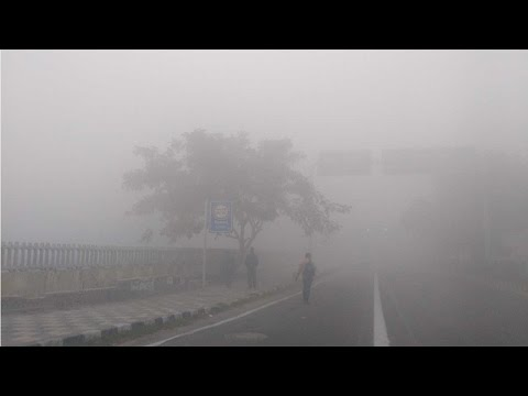 Fog engulfs Delhi NCR; Traffic disrupted, flights and trains delayed  , Watch Video