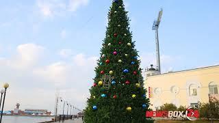 Во Владивостоке началась установка новогодних елок