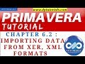 Primavera P6 Tutorials : Chapter - 6.2 : Importing Data from XER, XML formats || dptutorials