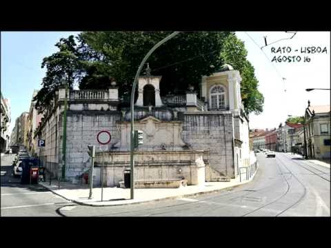 Rato em Lisboa