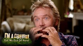 Noel Edmonds Reveal Interview! | I'm A Celebrity... Get Me Out Of Here!