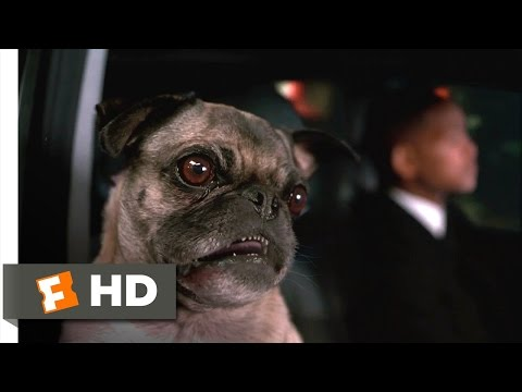 Men in Black II - Frank Will Survive Scene (2/10) | Movieclips