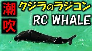パパむうとが製作した「鯨」のラジコンです。 楽しい雰囲気が伝わったら幸いです。 新作を作る励みになるのでチャンネル登録をお願いします!...