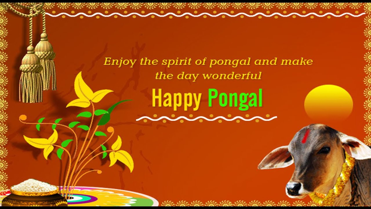 Happy Pongal 2016 Latest Wishes Greetings Whatsapp Video E Card