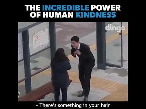The incredible power of human kindness