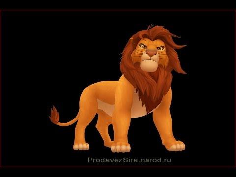 «Wild African Lions» фото слайд шоу картинки.